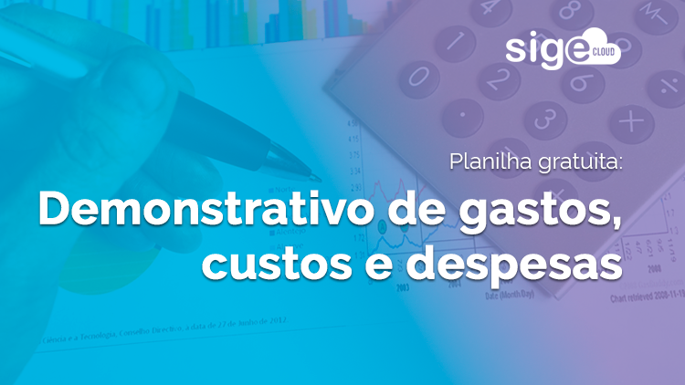 Demonstrativo de gastos, custos e despesas: planilha para download